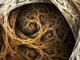 spiral-roots