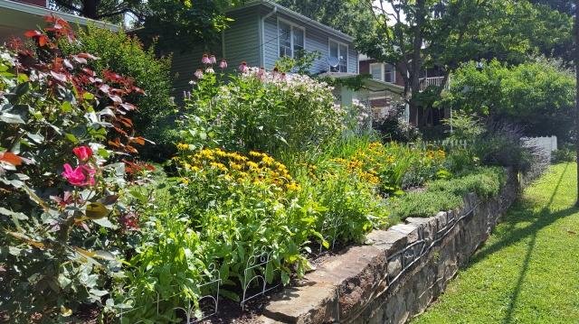 garden1801