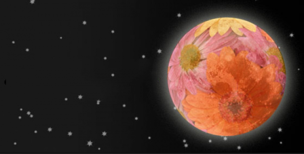flower_moon_0
